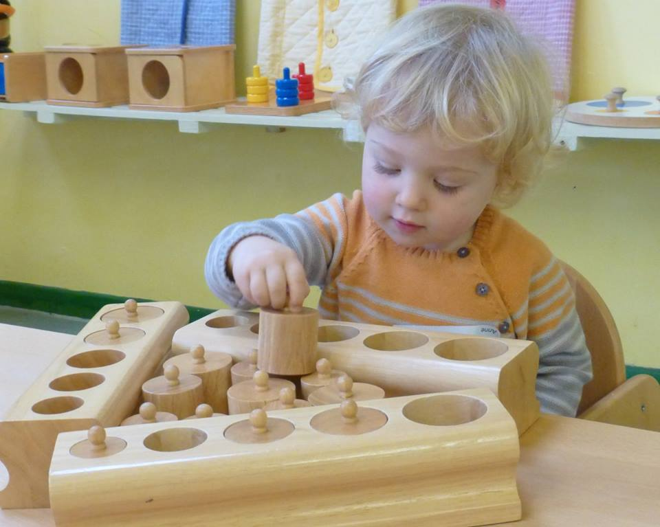 Parent & Toddler Sessions: Meadowbrook
